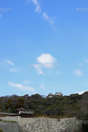 堀之内からの松山城の写真素材 [FYI02997243]