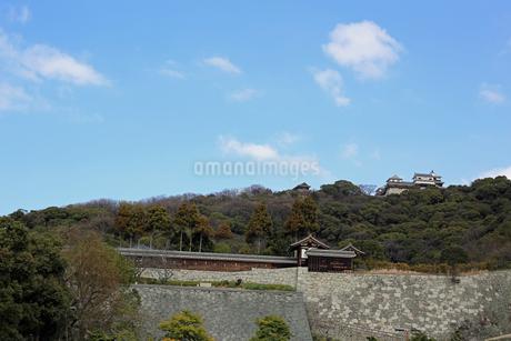 堀之内からの松山城の写真素材 [FYI02997245]
