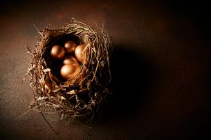 鳥の巣と金の卵の写真素材 [FYI02997268]