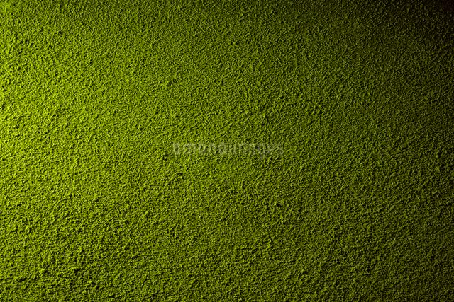 抹茶の写真素材 [FYI02997277]