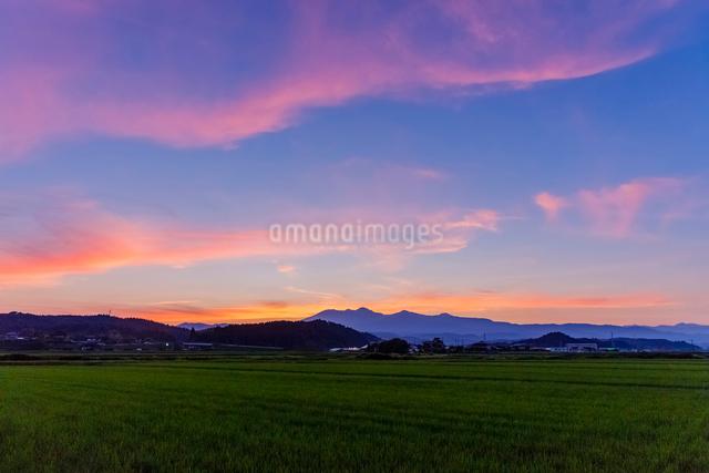 稲田と夕焼けの高原山の写真素材 [FYI02997482]