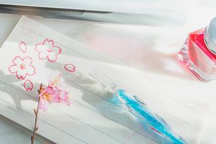 ガラスペンと便箋と桜の花の写真素材 [FYI02997486]