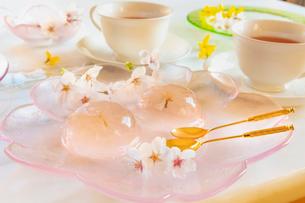 桜の花びらの入ったゼリーと桜の花と紅茶の写真素材 [FYI02997506]