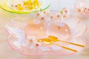 桜の花びらの入ったゼリーと桜の花の写真素材 [FYI02997509]