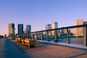 豊洲大橋の歩道と夕日に輝く高層ビル群の写真素材 [FYI02997531]