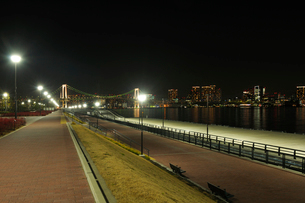 夜の豊洲ぐるり公園の写真素材 [FYI02997552]