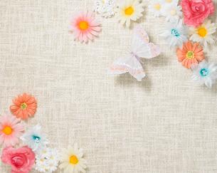 花と蝶の写真素材 [FYI02997702]