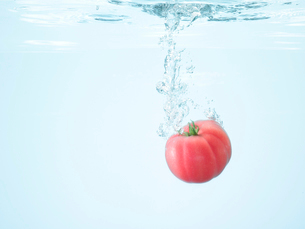 水に落ちたトマトの写真素材 [FYI02997745]