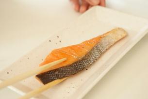 皿に盛られる鮭の切り身の写真素材 [FYI02997787]