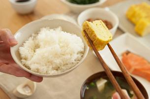 玉子焼きを摘んだ箸とご飯の写真素材 [FYI02997801]