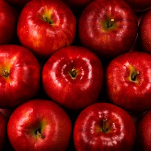 敷詰めたリンゴの俯瞰の写真素材 [FYI02997979]