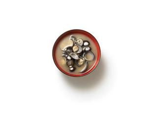 お味噌汁の写真素材 [FYI02998119]