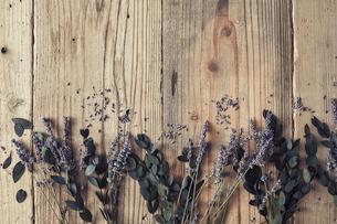 木天板の上に置かれたドライのラベンダーと葉っぱの写真素材 [FYI02998454]