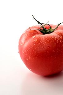 白い背景のトマトの写真素材 [FYI02998655]