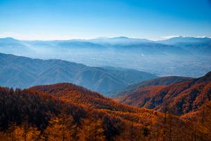 美ヶ原高原より紅葉のカラマツ林と松本平方面御嶽山乗鞍岳の写真素材 [FYI02998725]