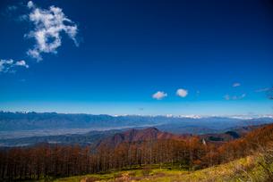 美ヶ原高原よりカラマツ林と北アルプス連峰の写真素材 [FYI02998729]