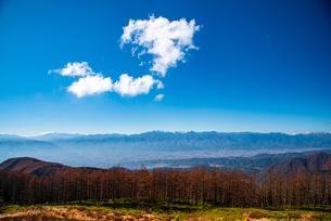 美ヶ原高原よりカラマツ林と北アルプス連峰の写真素材 [FYI02998731]