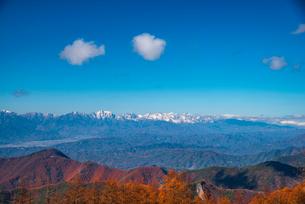 美ヶ原高原よりカラマツ林と北アルプス後立山連峰の写真素材 [FYI02998733]