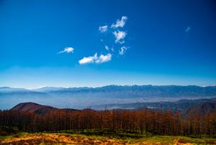 美ヶ原高原よりカラマツ林と北アルプス後立山連峰の写真素材 [FYI02998736]