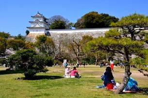 県立明石公園,明石城巽櫓の写真素材 [FYI02998935]