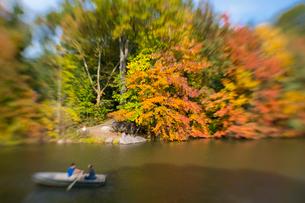 紅葉に囲まれたセントラルパークのザ レイクでボートに乗るカップル。の写真素材 [FYI02998998]