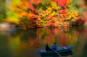 紅葉に囲まれたセントラルパークのザ レイクでボートに乗るカップル。の写真素材 [FYI02999000]