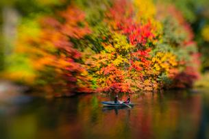 紅葉に囲まれたセントラルパークのザ レイクでボートに乗るカップル。の写真素材 [FYI02999002]