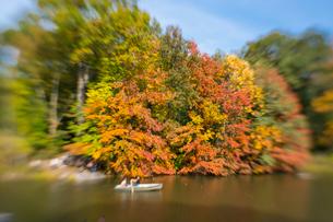 紅葉に囲まれたセントラルパークのザ レイクでボートに乗るカップル。の写真素材 [FYI02999012]