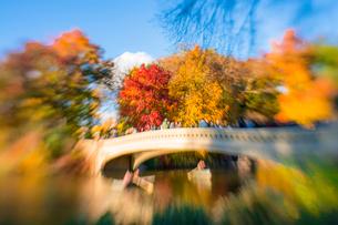 紅葉に囲まれたセントラルパークのザ レイクに掛かるボウブリッジを渡る人々とボートに乗る人々。の写真素材 [FYI02999016]