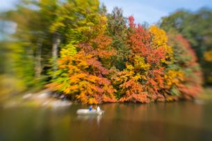 紅葉に囲まれたセントラルパークのザ レイクでボートに乗るカップル。の写真素材 [FYI02999017]