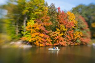 紅葉に囲まれたセントラルパークのザ レイクでボートに乗るカップル。の写真素材 [FYI02999019]
