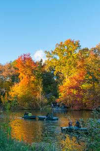 夕日に輝く紅葉に囲まれたセントラルパークのザ レイクでボートに乗るカップル。の写真素材 [FYI02999027]