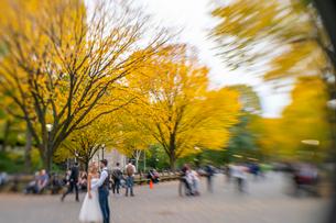 紅葉の並木に囲まれるセントラルパークのザ モールでウエディング写真を撮るカップルと人々。の写真素材 [FYI02999028]