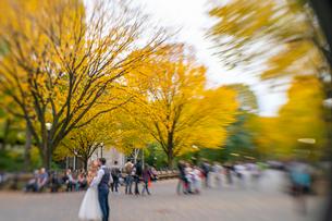 紅葉の並木に囲まれるセントラルパークのザ モールでウエディング写真を撮るカップルと人々。の写真素材 [FYI02999029]