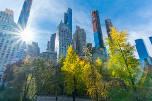 ミッドタウンマンハッタン摩天楼の間に輝く太陽に照らされるセントラルパークの紅葉。の写真素材 [FYI02999042]
