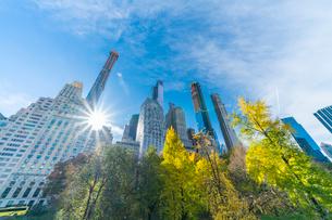 ミッドタウンマンハッタン摩天楼の間に輝く太陽に照らされるセントラルパークの紅葉。の写真素材 [FYI02999043]