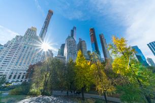 ミッドタウンマンハッタン摩天楼の間に輝く太陽に照らされるセントラルパークの紅葉。の写真素材 [FYI02999045]