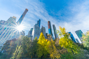 ミッドタウンマンハッタン摩天楼の間に輝く太陽に照らされるセントラルパークの紅葉。の写真素材 [FYI02999046]