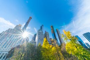 ミッドタウンマンハッタン摩天楼の間に輝く太陽に照らされるセントラルパークの紅葉。の写真素材 [FYI02999047]