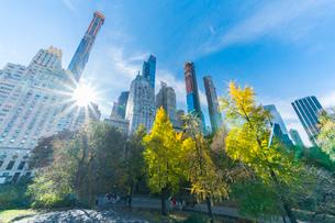 ミッドタウンマンハッタン摩天楼の間に輝く太陽に照らされるセントラルパークの紅葉。の写真素材 [FYI02999054]