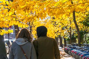 紅葉の並木に囲まれたセントラルパーク沿いの五番街の歩道を歩くカップル。の写真素材 [FYI02999059]