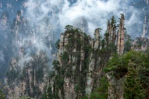 天子山 御筆峰の写真素材 [FYI02999179]