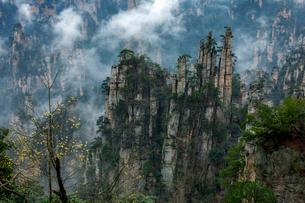 天子山 御筆峰の写真素材 [FYI02999185]