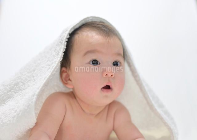 バスタオルに包まれた赤ちゃんの写真素材 [FYI02999294]