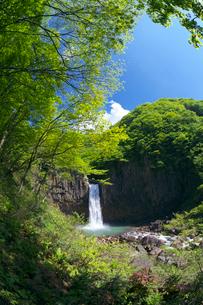 新緑の苗名滝 百名瀑の写真素材 [FYI02999666]