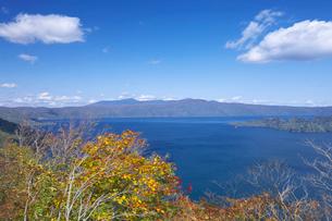 十和田湖の紅葉と青空の写真素材 [FYI02999679]