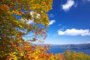 十和田湖の紅葉と青空の写真素材 [FYI02999681]
