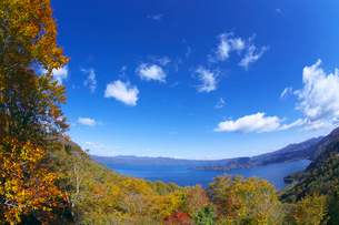 十和田湖の紅葉と青空の写真素材 [FYI02999695]