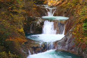 七ツ釜五段の滝の紅葉 西沢渓谷の写真素材 [FYI02999717]