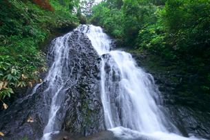 新緑の七滝の写真素材 [FYI02999753]